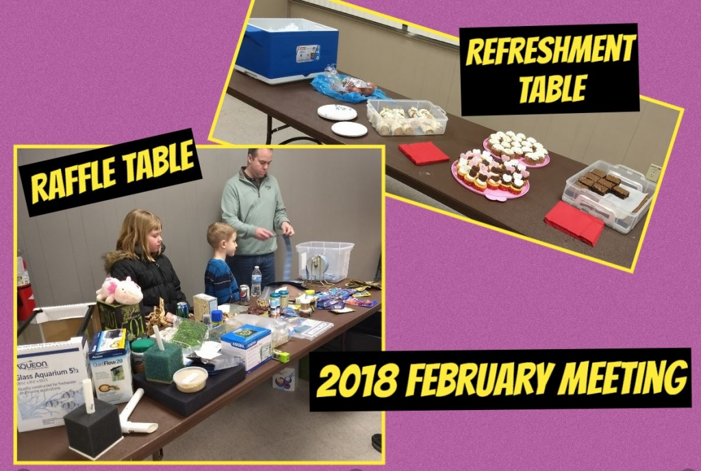 2018-February-Raffle-and-refreshments
