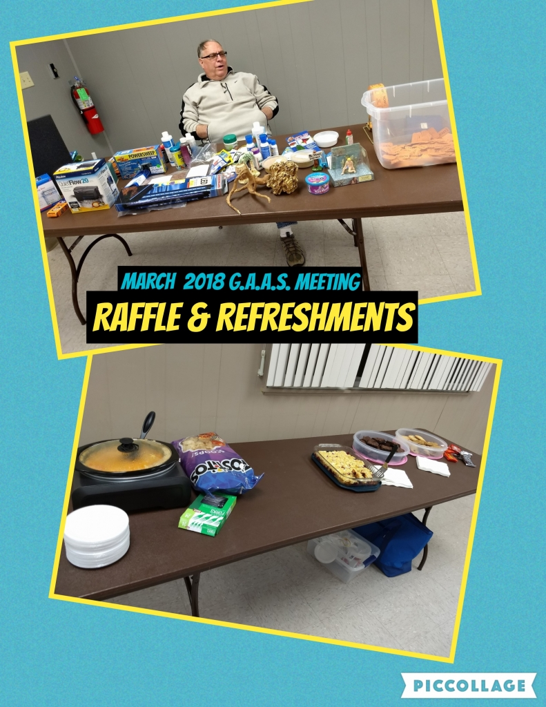 Raffle & Refreshments