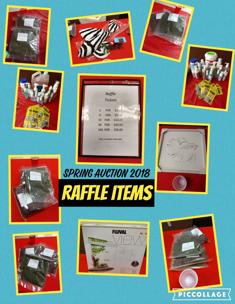 raffle items